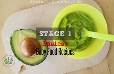 The Easiest Stage 1 Baby Food Recipes